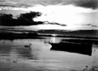 Black and White photograph of Lake O Flynn, Ballinlough, Co. Roscommon.